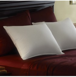 Pacific Coast® Feather Down Pillow