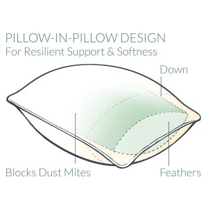 Pacific Coast® Feather Double Touch of Down® Pillow