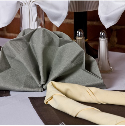 Satin Band Beauti Damask Napkins, 22X22