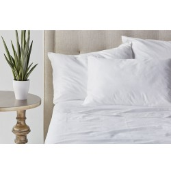 Paragon™ Cotton Sheets By Standard Textile