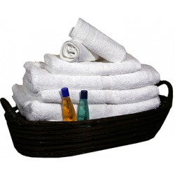 Oxford Bronze Classic Towel Collection