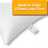 Disposable Economy Pillows